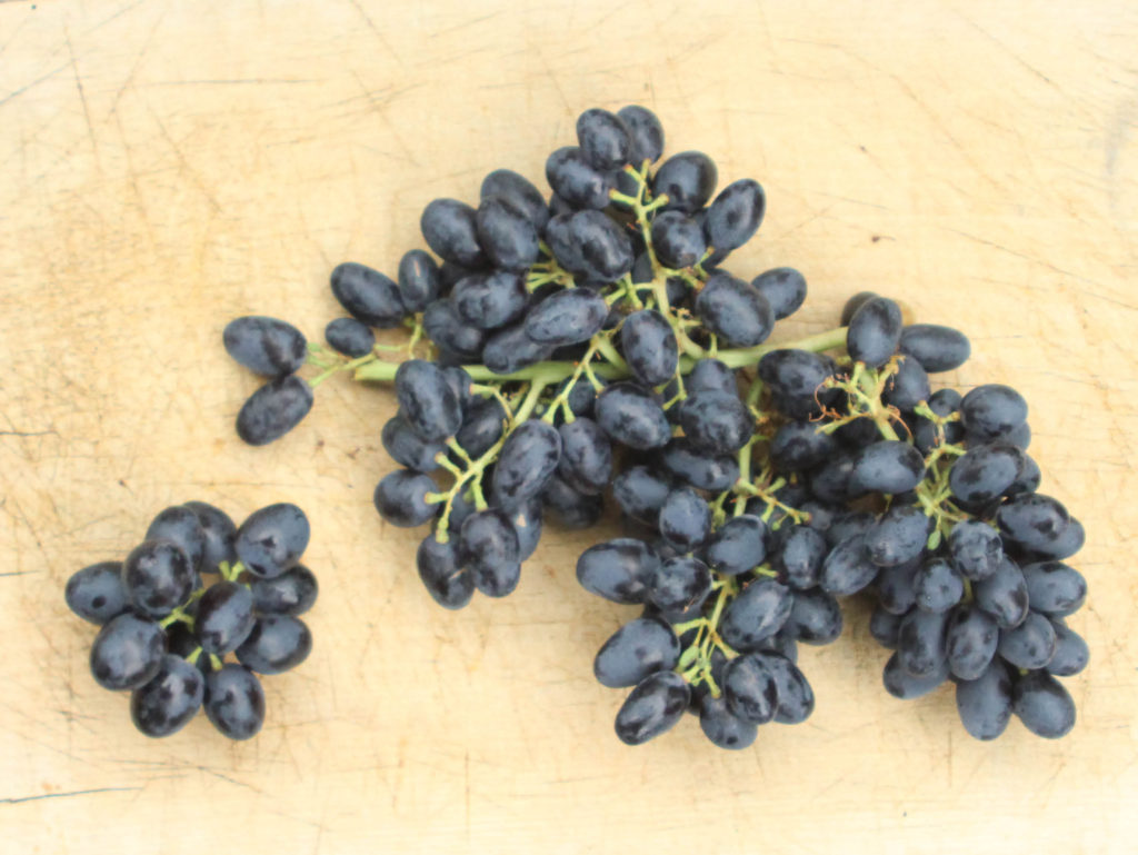 Red Grapes, 500g